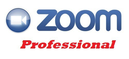Zoom Professional Services Image